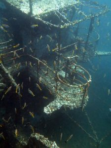Wreckdiving in the waters around Koh Mak