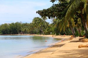 Koh Mak Beach - Administration and Economy