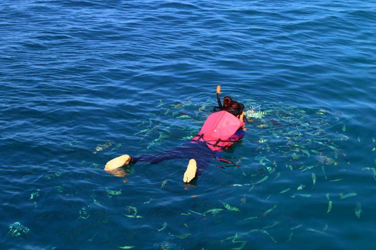 在玛岛浮潜