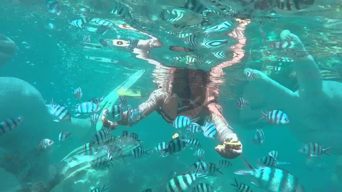 玛岛周围清澈碧蓝的海水
